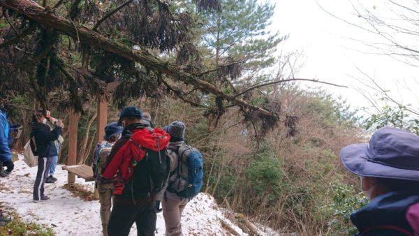 英彦山トレッキング途中④